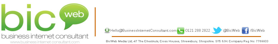 Business Internet Consultant BIC Web Terms of Website Use Policy