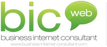 Business Internet Consultant