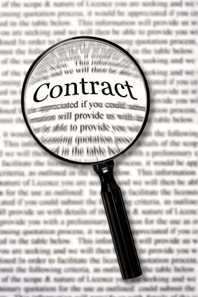 Website Design Contracts
